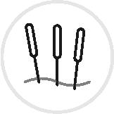 Icon Dry Needling